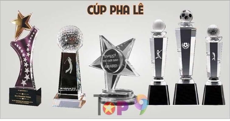 don-vi-lam-cup-vinh-danh-luu-niem-gia-re-da-nang