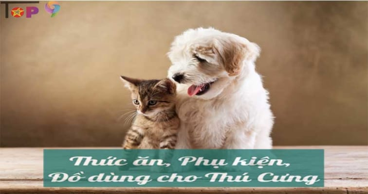 shop-phu-kien-thu-cung-da-nang-uy-tin-va-gia-tot-nhat